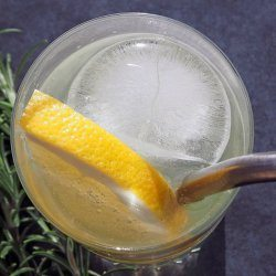 grapefruit-and-rosemary-gin